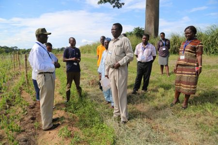 Norbert Maroya (left) explaining project field trials to new TAC members as well as IITA YIIFSWA project team.