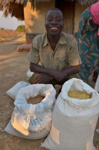 Picture of A Swaziland farmer showing part of his harvest of cowpea (left) and soybean (right) to be used as seed in the coming planting season.