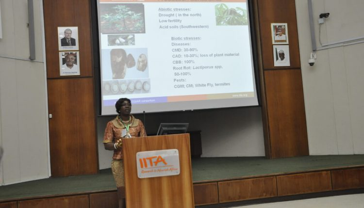 Elizabeth Parkes, Cassava Breeder, highlights major research breakthroughs.