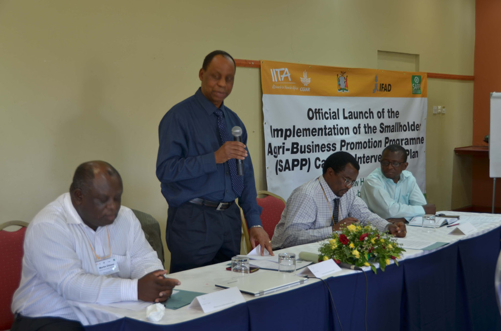 Picture of participants at SAPP project launch, Zambia