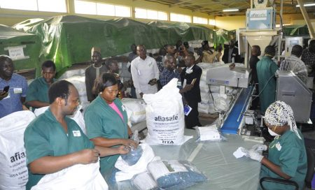 Picture of AgResults implementers visit the aflasafe plant in IITA, Ibadan
