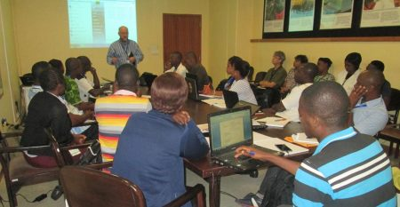 Picture of Participants learn key aspects of phenotyping for yam diseases.