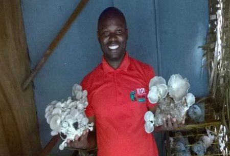 Picture of IYAKIN Agripreneur presenting white mushrooms.
