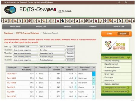Screen grab of The EDIT-Cowpea database (pictured above) enables cowpea breeders to identify genotypes with favorable target traits.