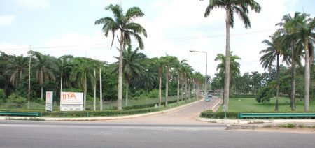 Picture of The AAHC conference will be held at the IITA-Ibadan campus.