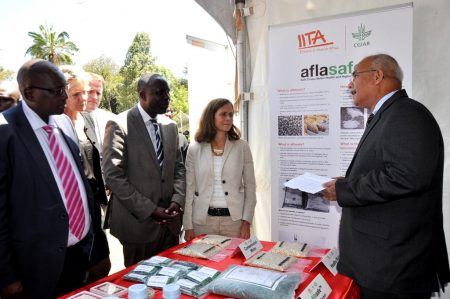 Picture of IITA's Ranajit Bandyopadhyay (right): (L-R) KALRO Director Eliud Kiplimo Kireger, Kenya's Agriculture Cabinet Secretary, Hon. Willy Bett, and USAID's Beth Dunford