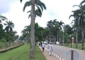 Picture of the entrance to IITA in 2016.