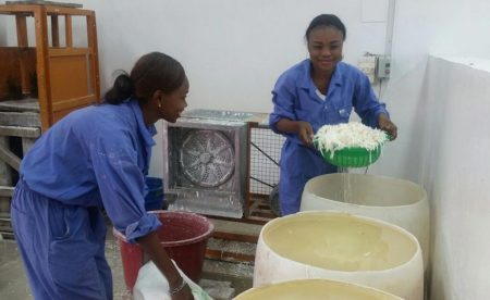 Picture of IYA Kinshasa delegates processing fresh cassava roots to chips
