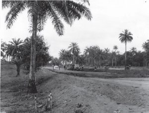 Picture of the entrance to IITA under construction in 1968.