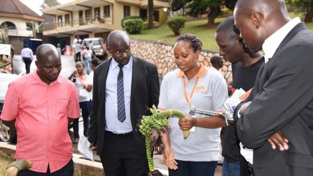 Picture of Dr Brigitte Uwimana explaining to Members of Parliament where and how banana seeds used in breeding are extracted.