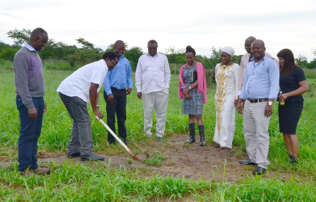 Picture of Chikoye breaking ground at the future site of the maize seed storage and warehouse facility at SARAH campus as IITA staff and construction representatives look on.