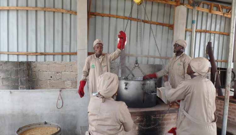 Picture of Lafia Innovation Platfrom members working on the GEM technology parboiler.