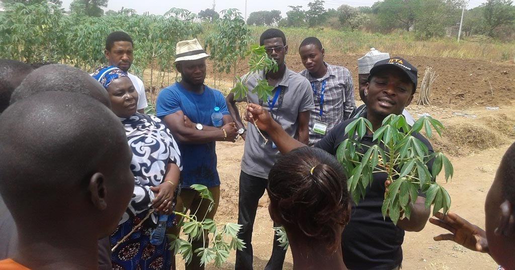 Picture of youth being trained on seed production.