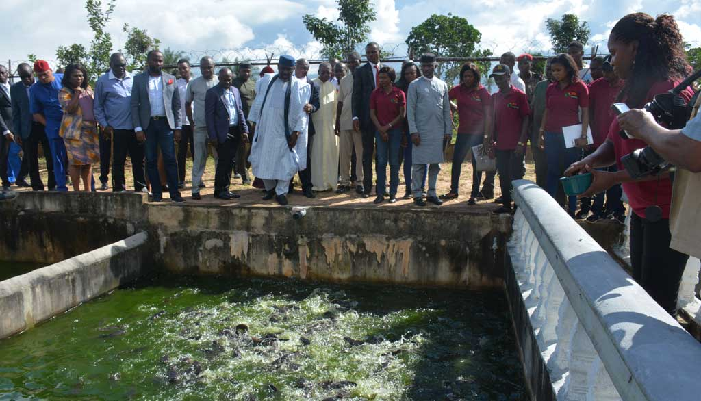 Picture of agripreneurs showing off the fish ponds.