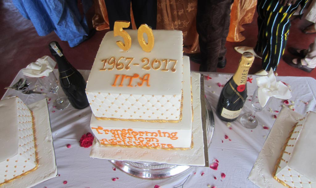 Picture of the IITA anniversary cake