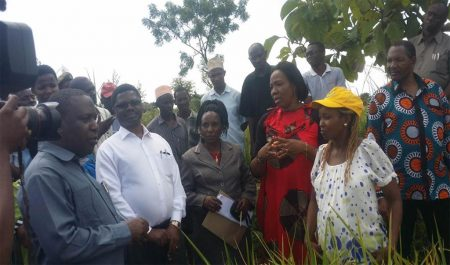 Picture of Hon Dr Charles Tizeba, Tanzania's Minister for Agriculture Livestock and Fisheries (far left), when he visited the Africa RISING Project farmer demonstration site at Kigugu Irrigation Scheme in Mvomero District.
