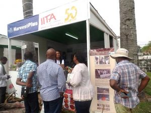 Picture of Exhibition stand of IITA, HarvestPlus, and Youth Agripreneurs.