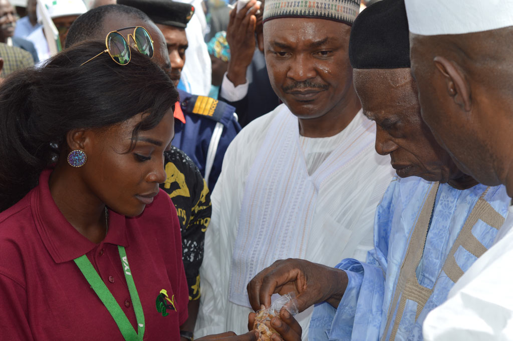 Picture L-R Ms. Bimpe Ayobami, IYA intern, Deputy Governor of Nasarawa State, HE, Silas Ali Agara, and Senator Abdullahi Adamu, Chairman, Senate Committee on Agriculture.