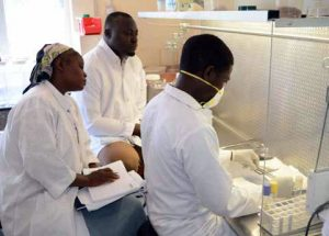 Staff working in the Lab.