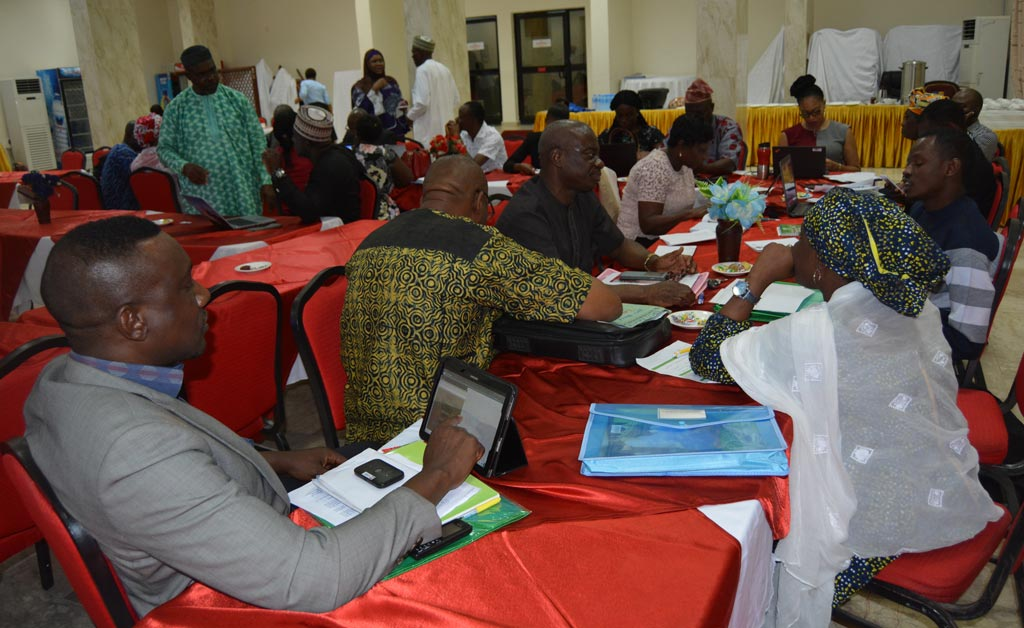 Picture of Group discussions at the FAO Nigeria program framework workshop