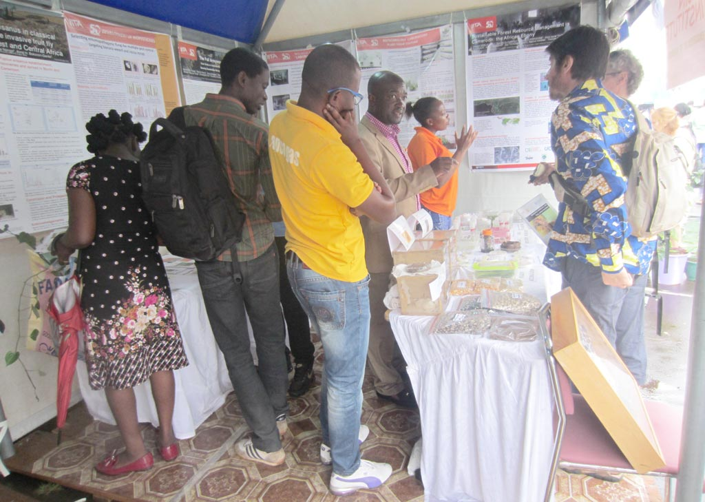 Picture of Apollin Fotso Kuate and other IITA staff interacting with visitors