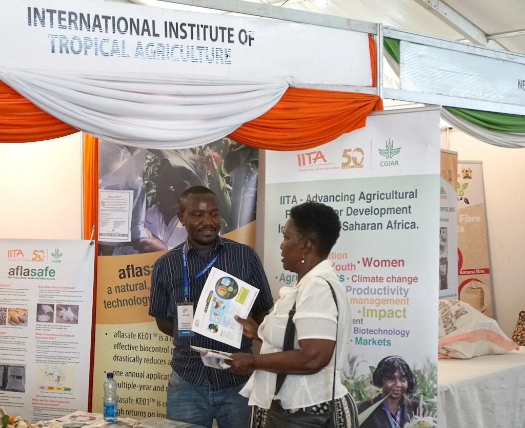 Picture of IITA exhibition booth, visitor listens to Edwin from aTTC talking about the aflasafe product