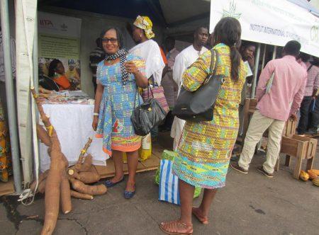 Picture of Visitor appreciating improved IITA cassava