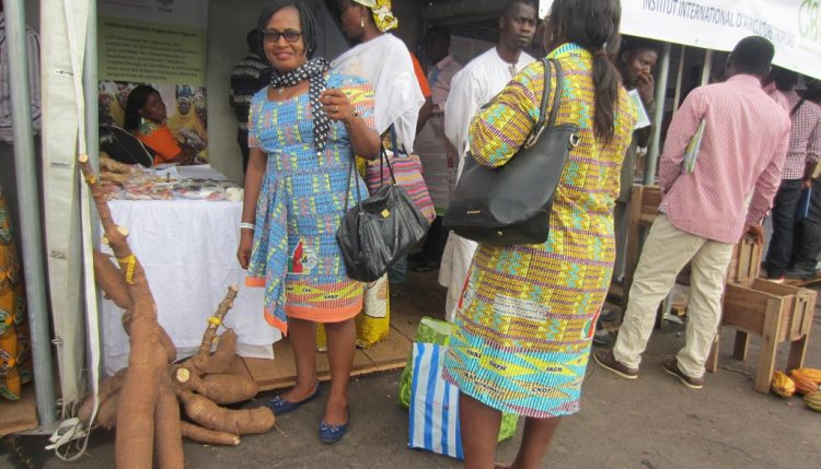 Picture of Visitor appreciating improved IITA cassava