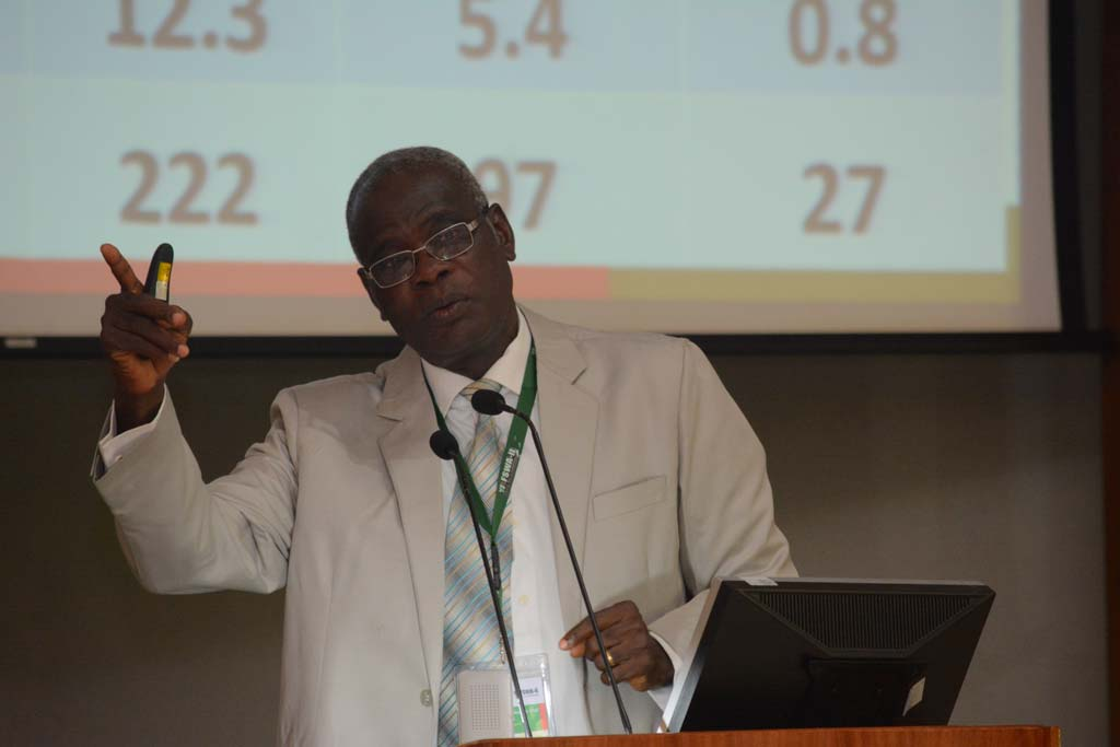 Picture of YIIFSWA Project Leader, Norbert Maroya, giving a presentation at the meeting.