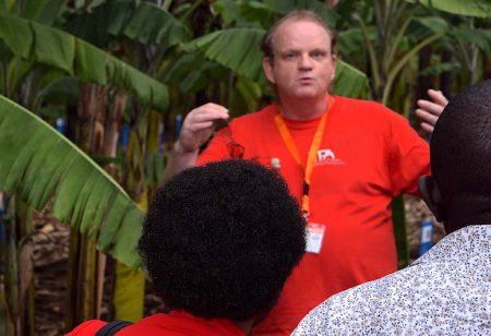 Picture of Dr Allan Brown, IITA Banana Breeder