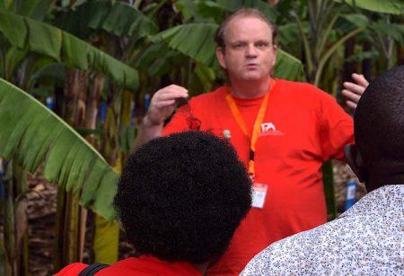 Picture of Dr Allan Brown, IITA Banana Breeder