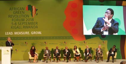 Picture of a panel of experts look at the fall armyworm problem at AGRF
