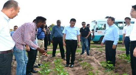 Picture of Adebayo Oluwaseun of IITA touring the Changsha delegates around the Abuja farm.