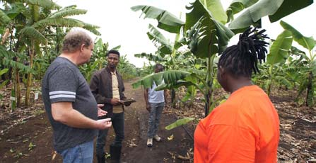 Picture of Banana Breeder Allan Brown in a discussion with members of the research team.