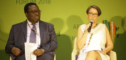 Picture of Dennis Rangi, CABI; and May-Guri Saethre, IITA, in a panel discussion