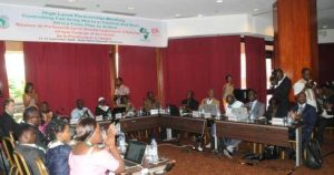 Picture of participants at the high-level partnership meeting on FAW management in Cameroon
