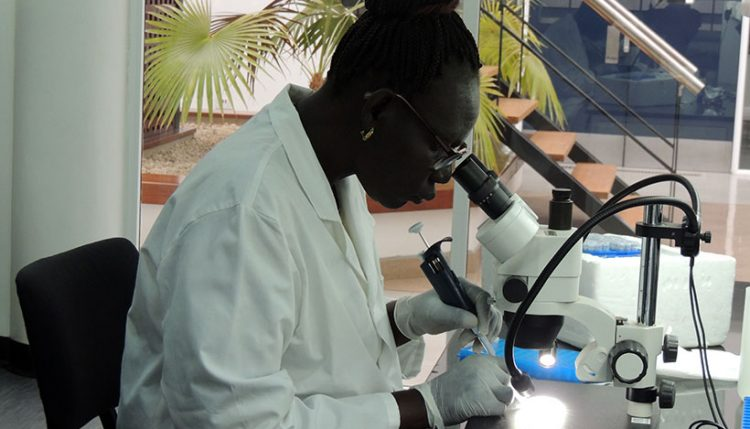 Beatrice Langwa in the lab at IITA-Tanzania.