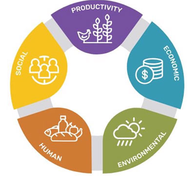 The five domains of sustainable intensification.