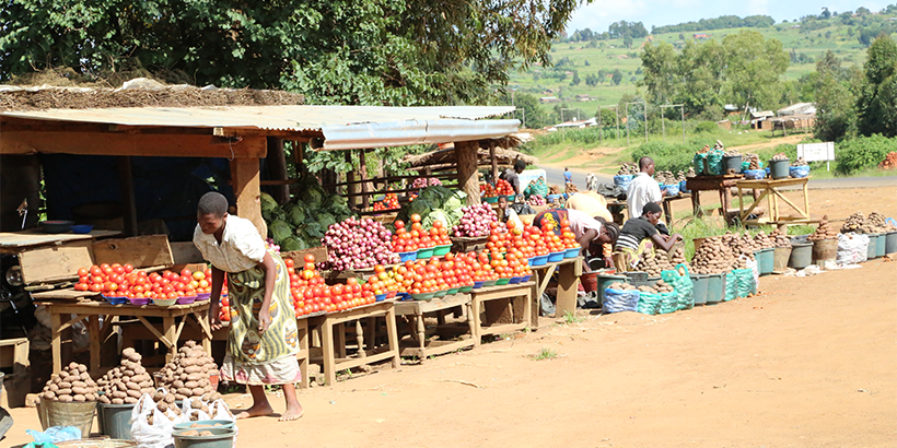 The gender equity gap: An inside look at vegetable producers and traders in northern and central Tanzania