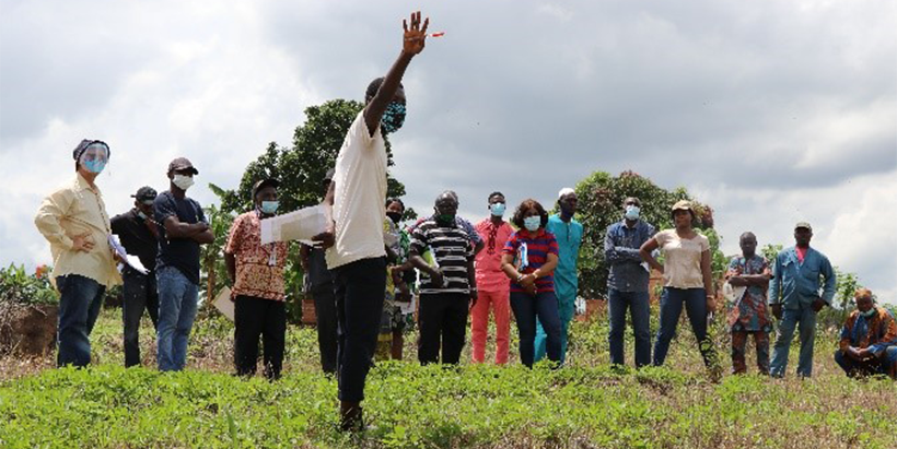 Joint agribusiness park activities commence in Oyo State, Nigeria