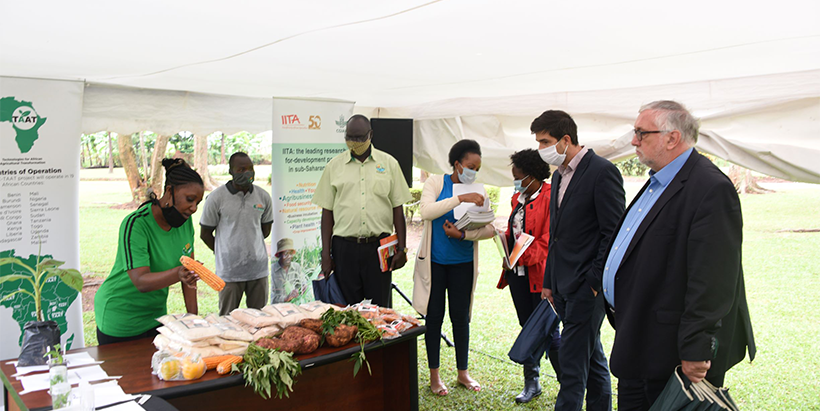The Belgian Ambassador to Uganda commends IITA's efforts to transform the agriculture sector