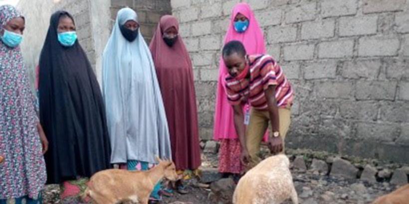 IITA trains Northeast women in beekeeping and goat rearing