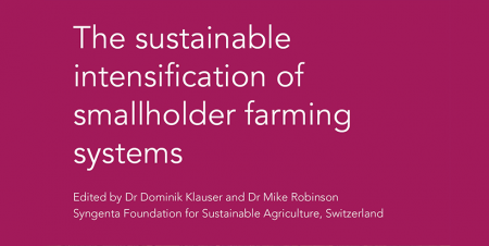 New publication tackles how best to support smallholder farmers