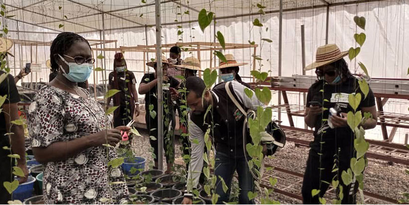 Maiden Naija Farmer Reality TV show on a learning visit to IITA Abuja