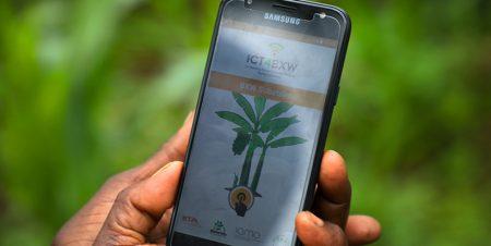 Food security: Scaling innovation towards banana production in Rwanda